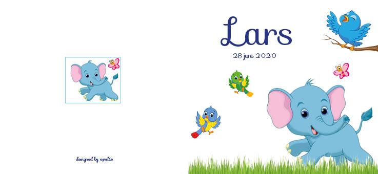 Geboorte Lars